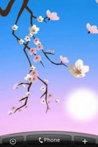 Lovely Sakura